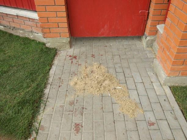 ВБольшой Туле ночью изавтоматов расстреляли бизнесмена