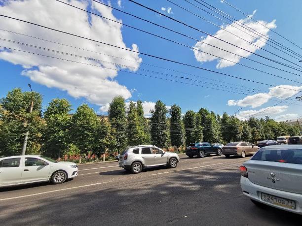 Туляки просят вернуть деревья на проспект Ленина