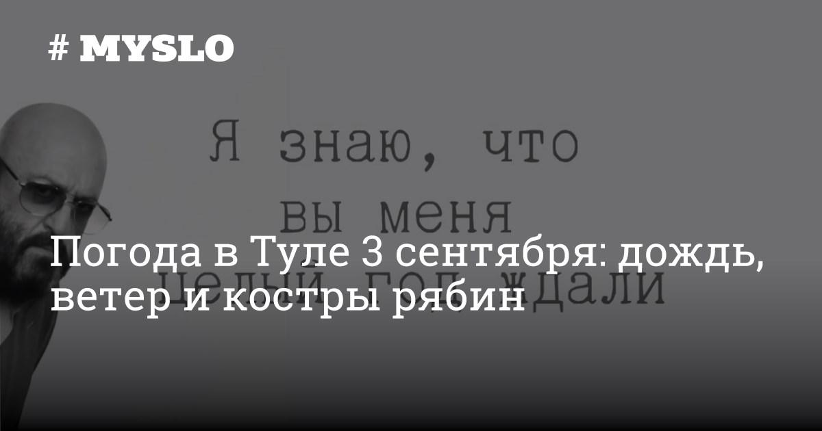 Погода в Туле 3 сентября: дождь, ветер и костры рябин - Новости Тулы и области - MySlo.ru