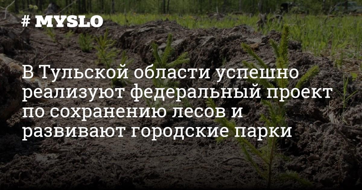 площадь занятая лесами в россии в км2 номер телефона бюро кредитных историй бесплатно
