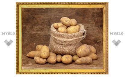 Туляк проломил стену, чтобы украсть мешок картошки
