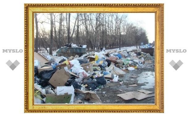 Улицы Пролетарского района Тулы завалены мусором