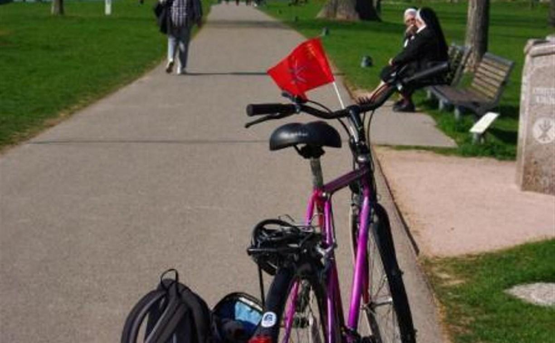 Тульскую набережную и Баташевский парк соединит велодорожка