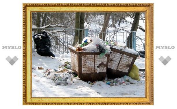 Кто в Туле убирает мусор в Платоновском лесу?