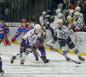 В Туле состоялось торжественное закрытие Чемпионата Тульской любительской хоккейной лиги