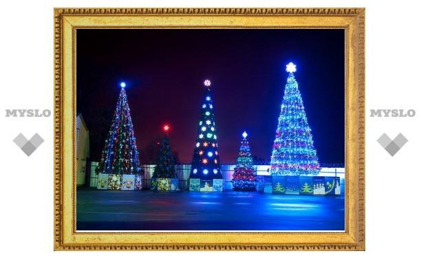 В Заречье установят елку за полмиллиона рублей