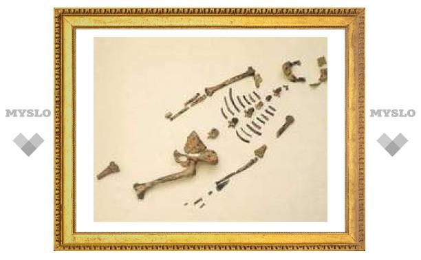 """Скелет австралопитека """"Люси"""" тайно вывезли в США"""