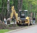 Центральный парк ждёт ландшафтная реконструкция