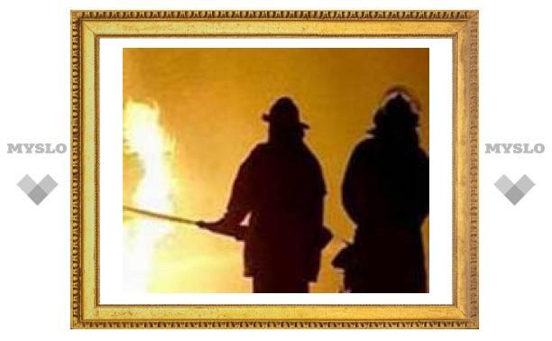 В пожаре под Тулой погибли два человека