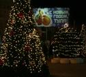 Сегодня, 2 декабря, тульские власти проведут объезд города