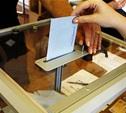 Урны для голосования в Новомосковске будут прозрачными