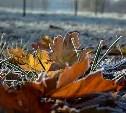 Погода в Туле 3 ноября: мокрый снег, заморозки, лёгкий ветер