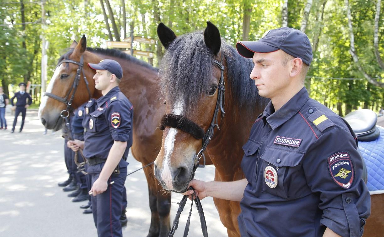 За безопасностью туляков в Центральном парке будет следить конный патруль