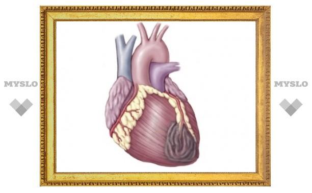"""Британцы """"разбудили"""" стволовые клетки для восстановления сердечной мышцы"""