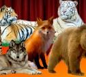 В ТЦ «Макси» приедут тигры, львы и медведи