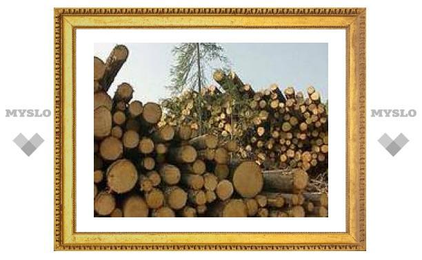 В России состоялись первые торги дизельным топливом и лесом