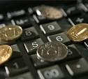 «Налоговые каникулы» для предпринимателей в Тульской области продлятся до 2021 года