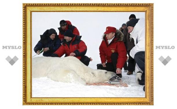 Путин предложил устроить в Арктике генеральную уборку