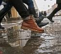 Выходные в Тульской области будут дождливыми и слякотными
