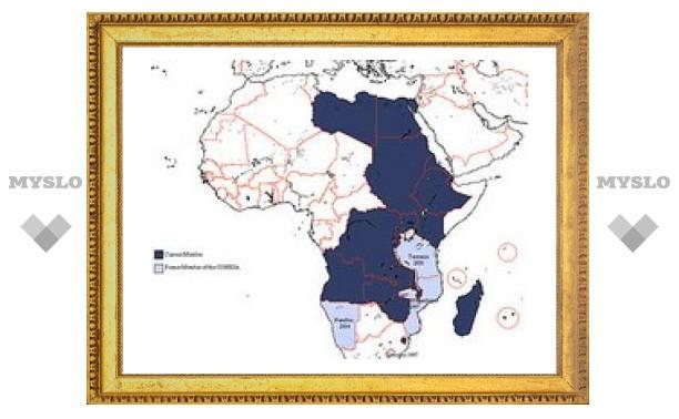 Африканские страны создадут таможенный союз