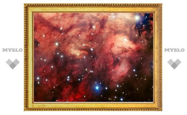 Ученые сфотографировали туманность Омега