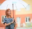 В Туле ожидается гроза и сильный ветер
