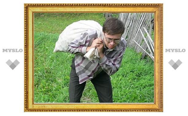В Новомосковске обокрали ГАЗель с картошкой