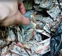 В Туле на берегу реки найдена свалка медицинских препаратов