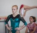 Тульская гимнастка выступит на Европейском юношеском олимпийском фестивале
