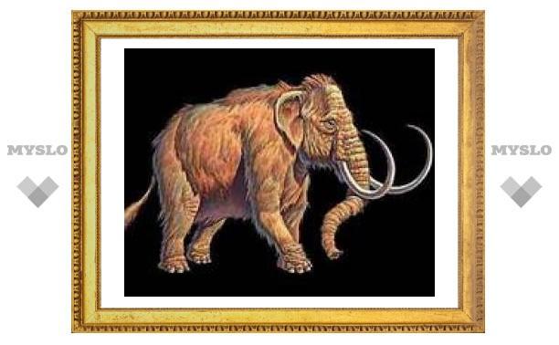 В Туле покажут мамонта и тулерпетона