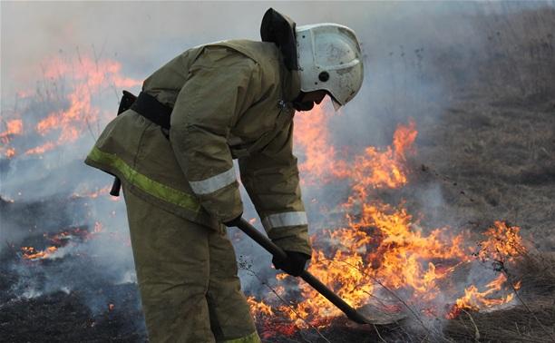 Жителям Тулы и области расскажут, чем грозит поджог травы