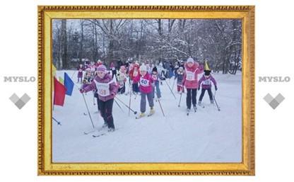 В Туле в честь сочинской Олимпиады посоревнуются школьники
