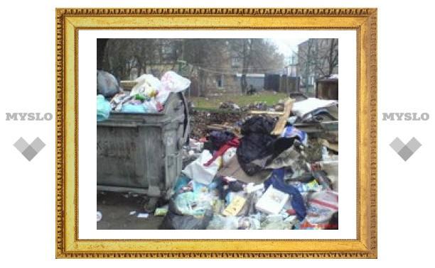 В Туле благоустроили площадки для мусора
