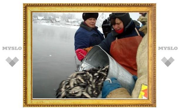 В Суворовских водоемах разводят рыбу