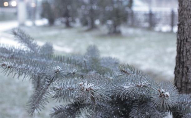 Тулу накрыл снегопад