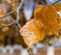 Метеопредупреждение: в Тульской области ожидается похолодание