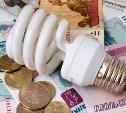 С 2016 года увеличится размер пени за несвоевременную оплату электроэнергии
