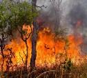 За неготовность к возможным пожарам туляков будут штрафовать