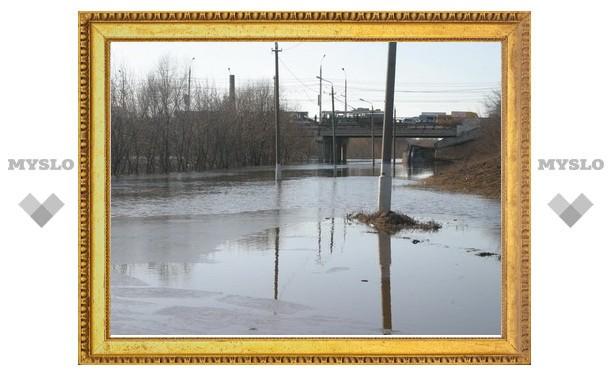 В Туле затопило Зареченский мост
