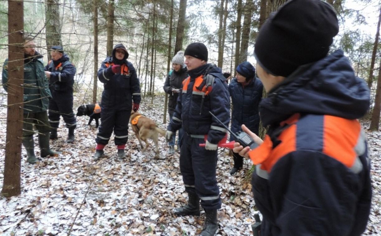 В Суворове нашли двух потерявшихся в лесу подростков