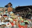 В Госдуму внесён законопроект о раздаче санкционных продуктов бедным