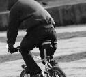 Двое несовершеннолетних туляков осуждены за велосипедные кражи