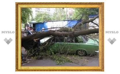 Как Тула пережила бурю