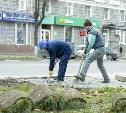 Нарушитель не успел в срок восстановить газон на ул. Первомайской