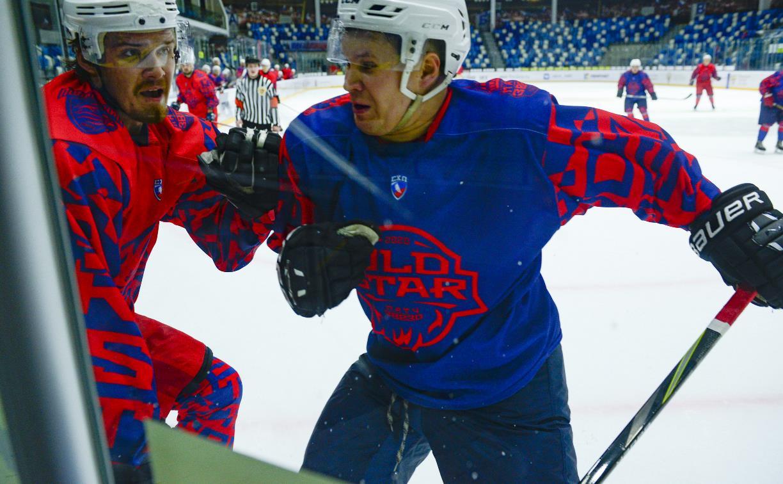 В Туле состоялся «Матч звезд» Студенческой хоккейной лиги: фоторепортаж