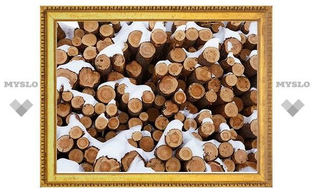 Тульские леса ушли с молотка