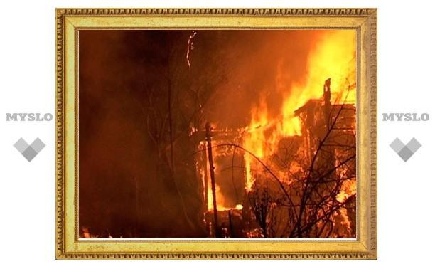Пенсионер заживо сгорел в собственном доме