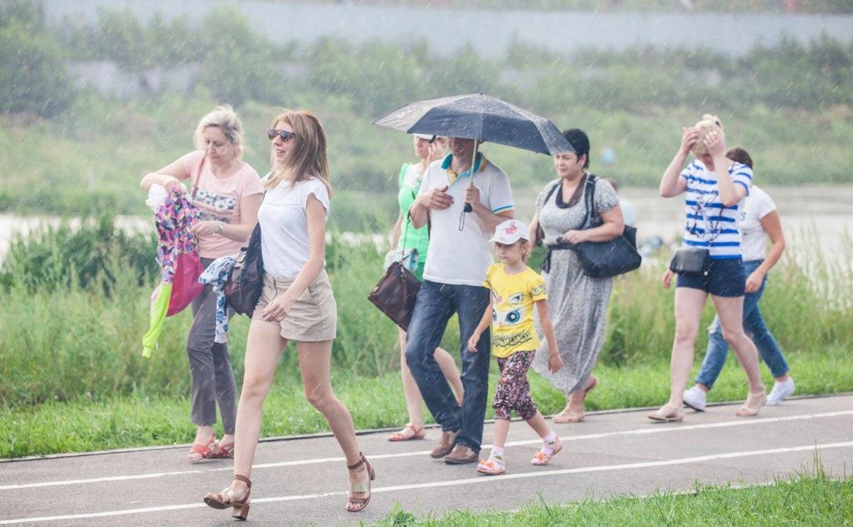 Погода в Туле 7 июня: настоящее лето, но с небольшим дождем