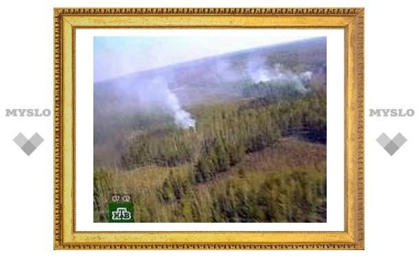 На Дальнем Востоке горят почти 1670 гектаров тайги и кустарников