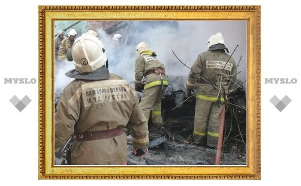 В сгоревшем под Тулой доме нашли тела двоих детей
